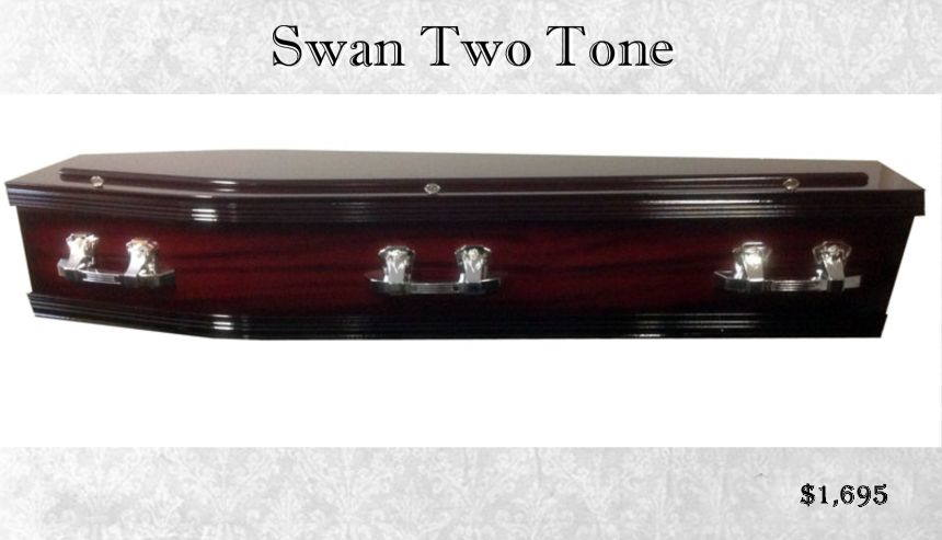 Single Raised Lid Two Tone Rosewood Mahogany Sapelle Swan Coffin