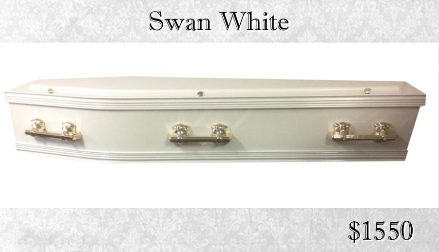 Single Raised Lid White Coffin Swan